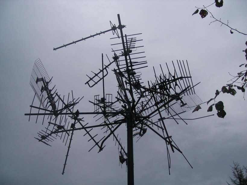 40 percent of the population around the antennas is sick