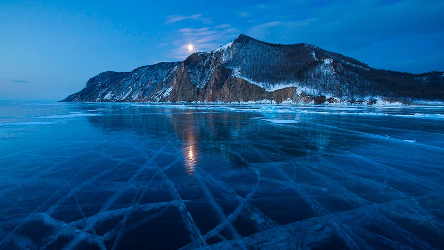 A study reveals that life under the ice is vibrant, complex and surprisingly active