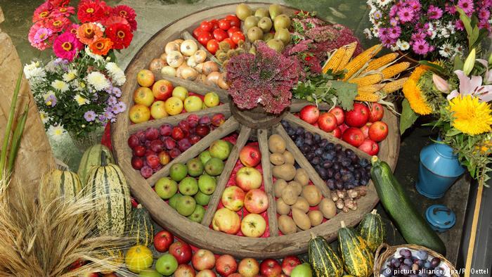 تناول الخضروات والفاكهة قد يحد من الانسداد الرئوي
