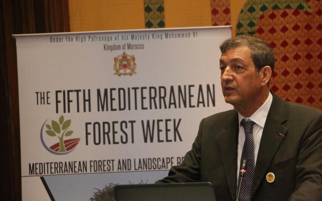 اسبوع الغابات المتوسطية يفتتح اعماله في المغرب: الحافي لـ greenarea.me اتفاقية باريس ستبقى سارية المفعول