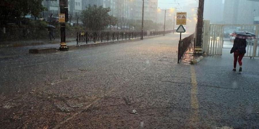 عاصفة عاتية تجتاح اسطنبول وتسقط الأشجار وتغمر الشوارع بالأمطار