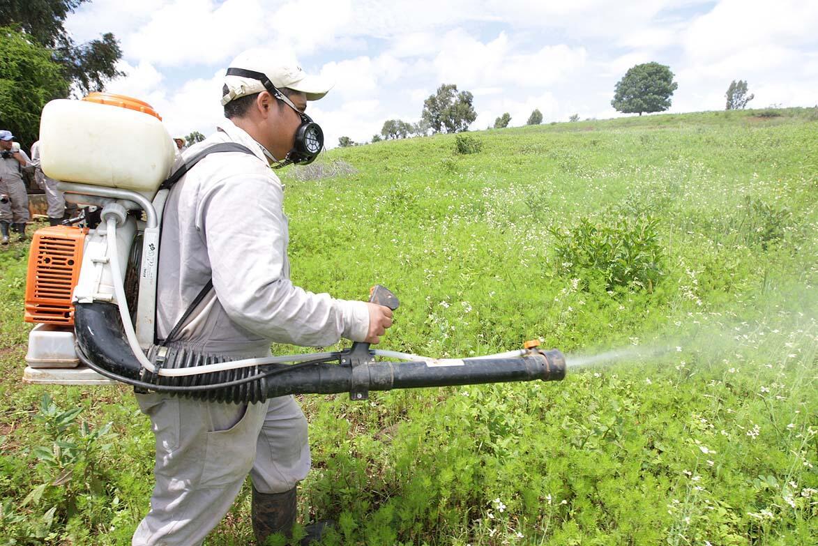 Los fitosanitarios agrícolas estan relacionados con  incidencia de ELA y TDAH!!!