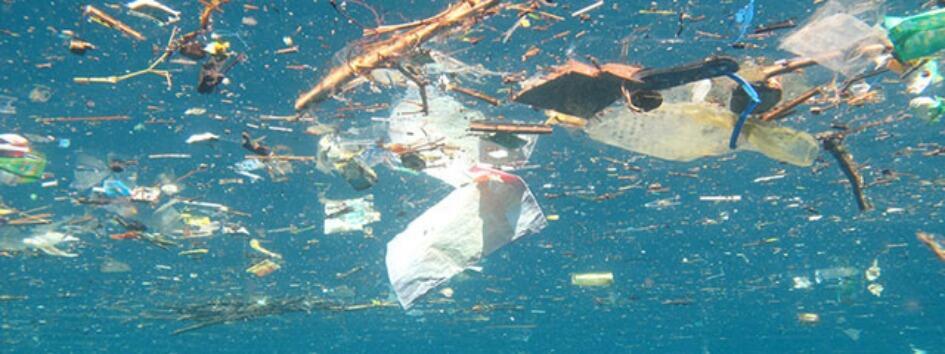 النفايات البلاستيكية في البحار .. ضرر لا يمكن إصلاحه