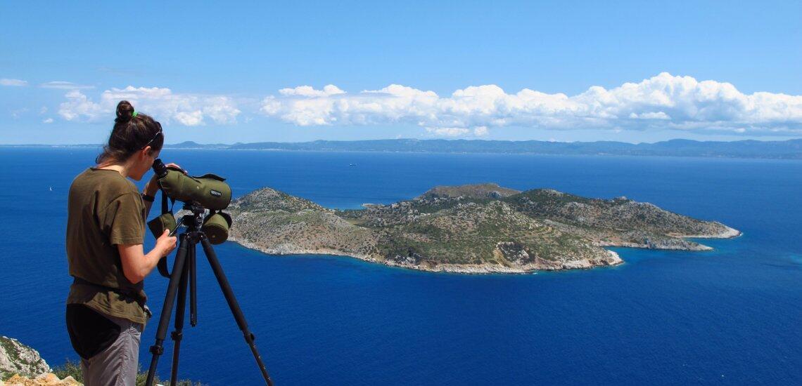 HOS/BirdLife Greece navigates political shoals to deliver critical marine protection