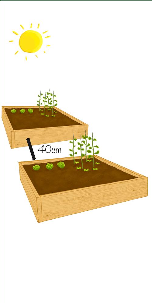 potager fiche jardinage