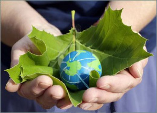 https://i2.wp.com/greenbabyguide.com/wp-content/uploads/2009/01/thrifty-green-blog-carnival-saving-money-going-green.jpg