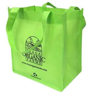 Eco-friendly standard grocery bag - green
