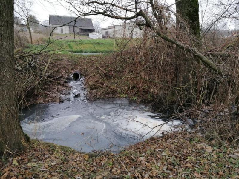 Стоки из домов и предприятий загрязняют воду