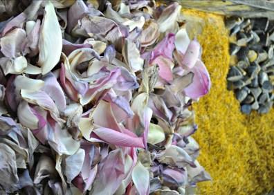lotuspetals