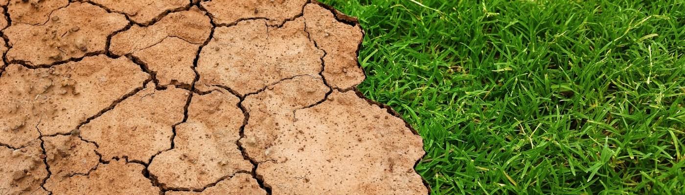 Soil Moisture Levels in Golf Greens