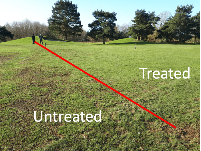 Treated v Untreated Acelepryn