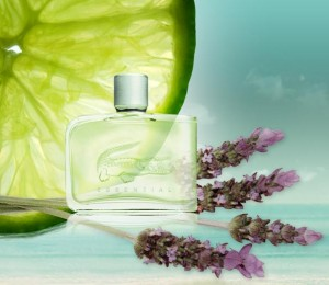 Regulation pushes fragrance vs flavours