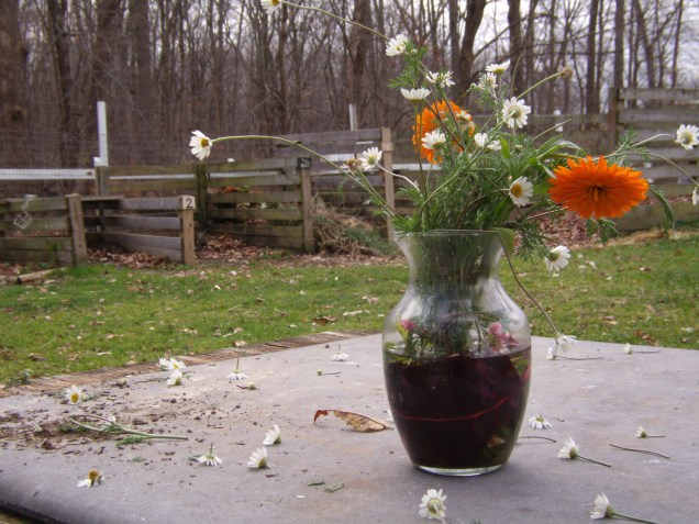 Student's alternate project: autumn flower display.