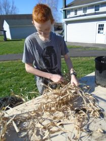 Joe bundles the leaves from the bamboo canes. We used the leaves to add insulation to the top of our carton cold frame.