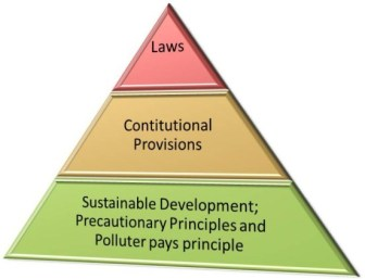Hierarchy of Environmental Jurisprudence in India