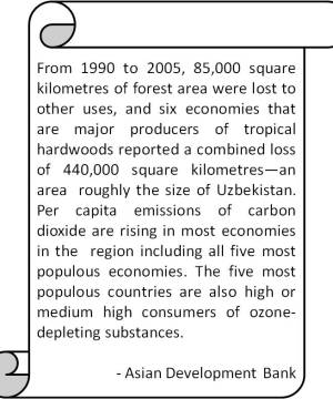 MDG facts about the forests