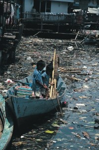 Water Pollution in Minimata Bay in Japan