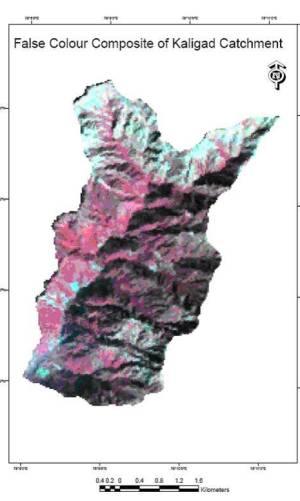 False color composit of Kaligad catchment