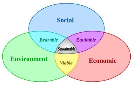 essay on environment sustainability and business green clean guide