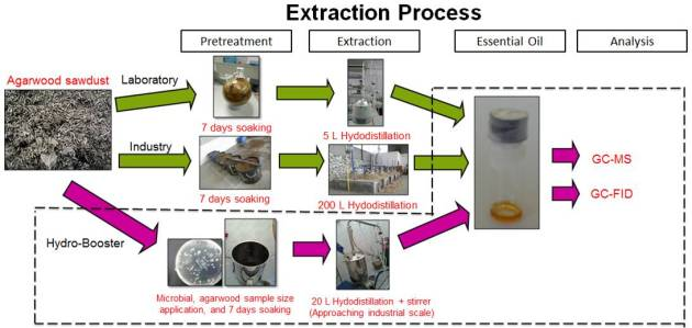 Extraction process-Agarwood