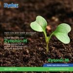 Zydex Industries