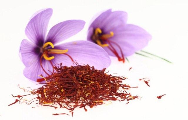 Herbs Health Benefits