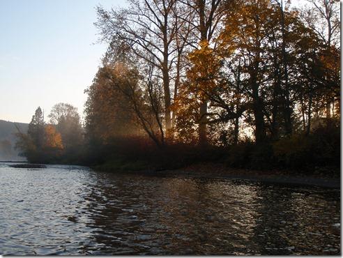 Fishing 021
