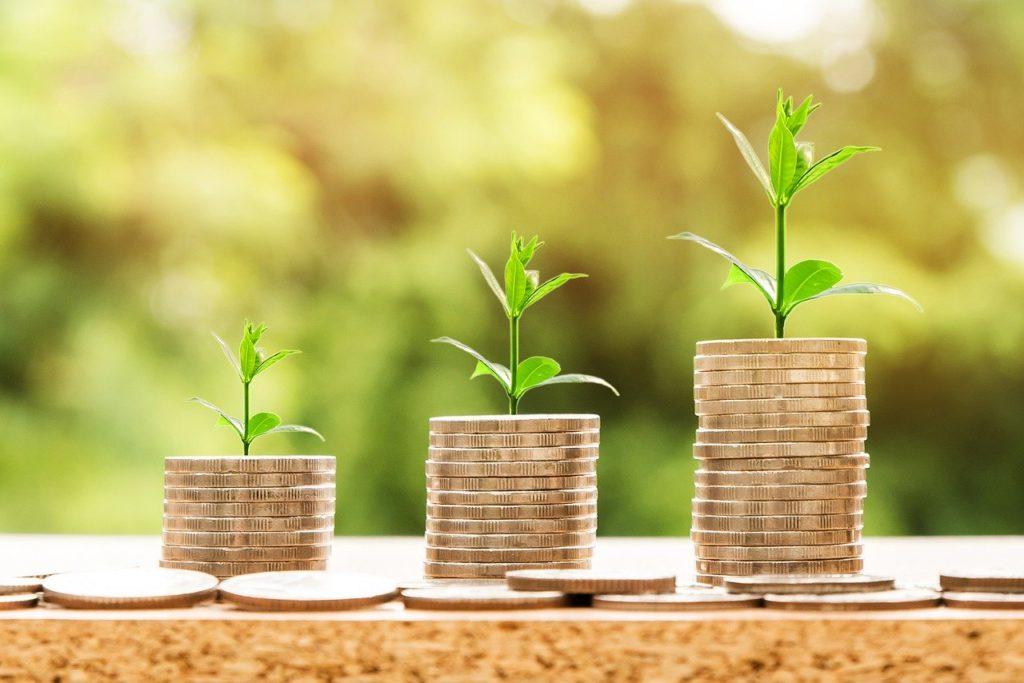 Symboliser l'augmentation des tarifs de l'énergie : piles d'argent de plus en plus hautes et plantes.