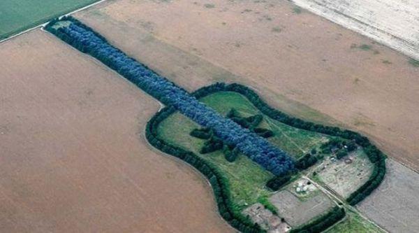7000 trees guitar 2