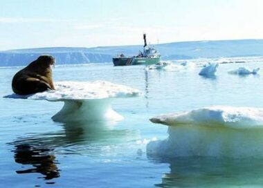 arctic ice melting2
