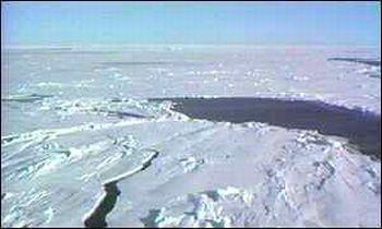 arctic sea ice gets thinner