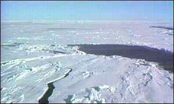 arctic sea ice gets thinner