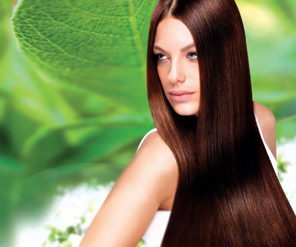 Organic Natural Temporary Hair Color