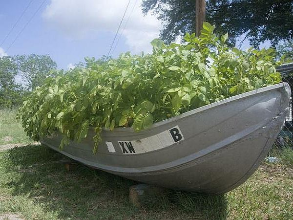 boat for gardening