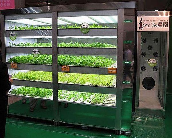 Dentsu Green Vending Machine
