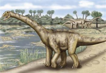 dinosaur unearthed in spain2 9