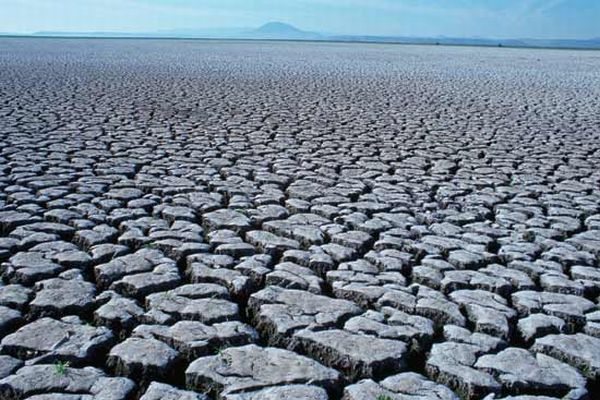 Drought and heat wave