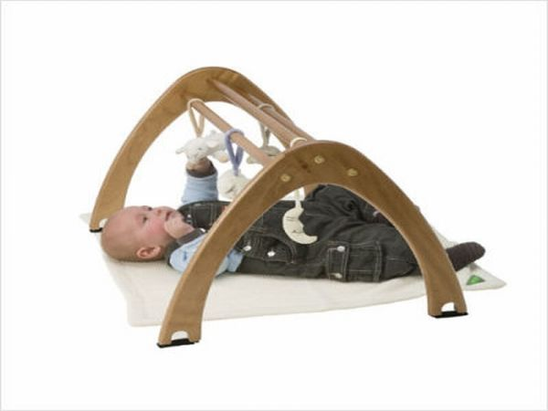 Eco Friendly Cariboo Activity Gym