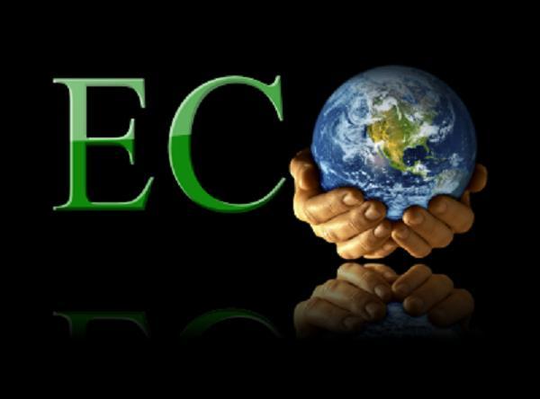 EcoSearch