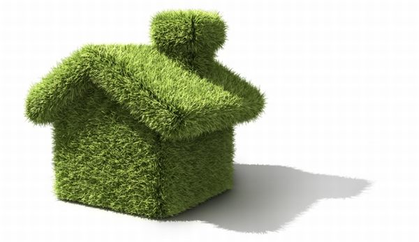 Five most bizarre ways to make your home green