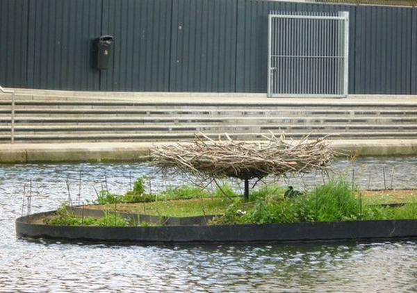 Floating Garden Habitat for Wildlife 3