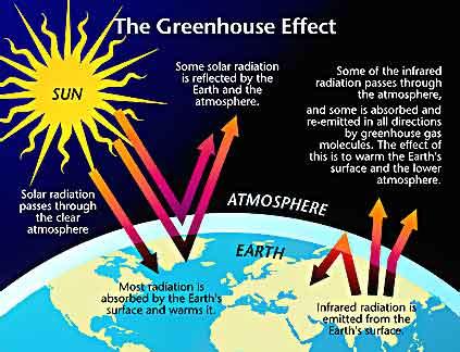 global warming 2455