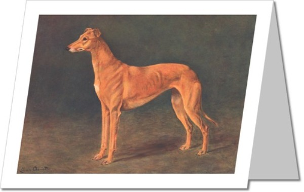 Greyhound Greeting Cards