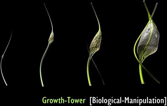 growth tower 1