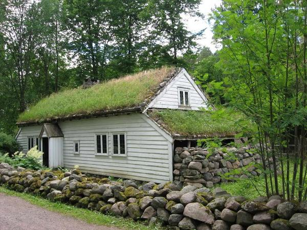 Delightful How To Build A Green Roof