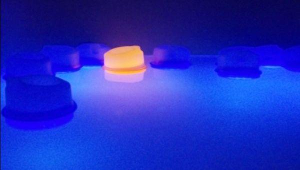 Mayang Anggraeni's Float Lights 2