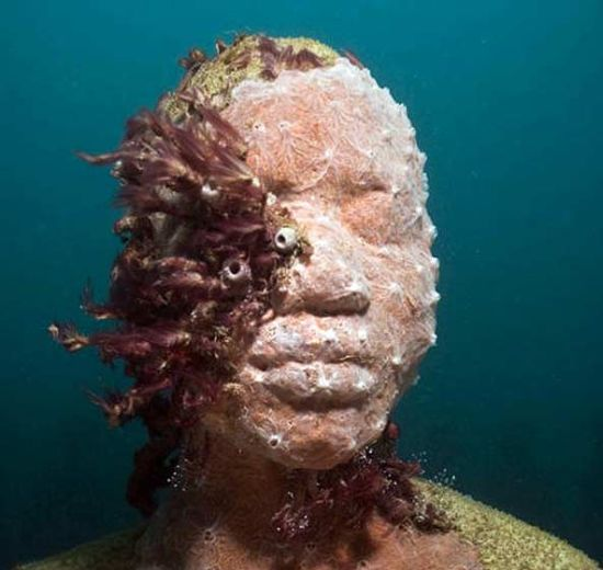 moiliniere bay underwater museum 4