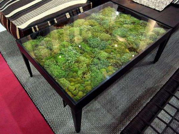 Moss covered furniture