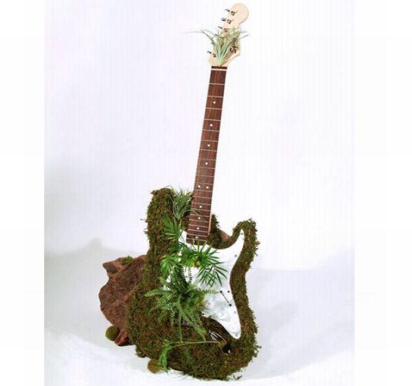 Moss Guitar