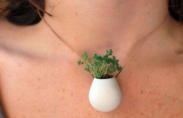 necklace plant3 2